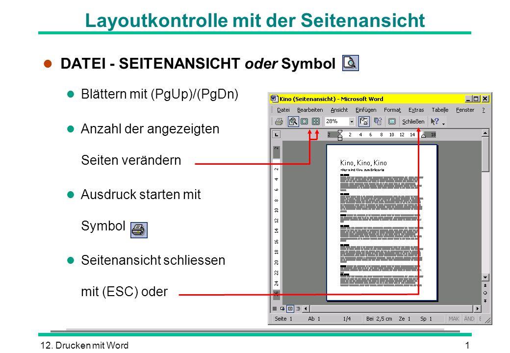 Layoutkontrolle mit der Seitenansicht