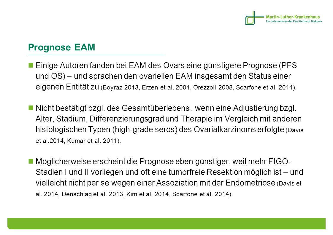 Prognose EAM