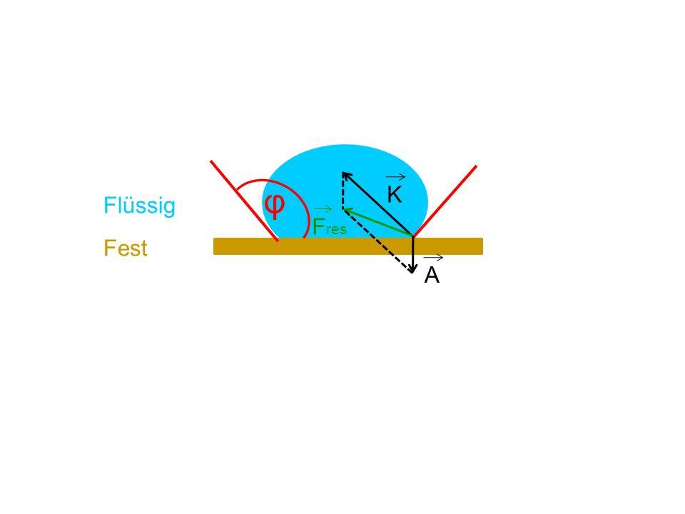 φ K Flüssig Fres Fest A