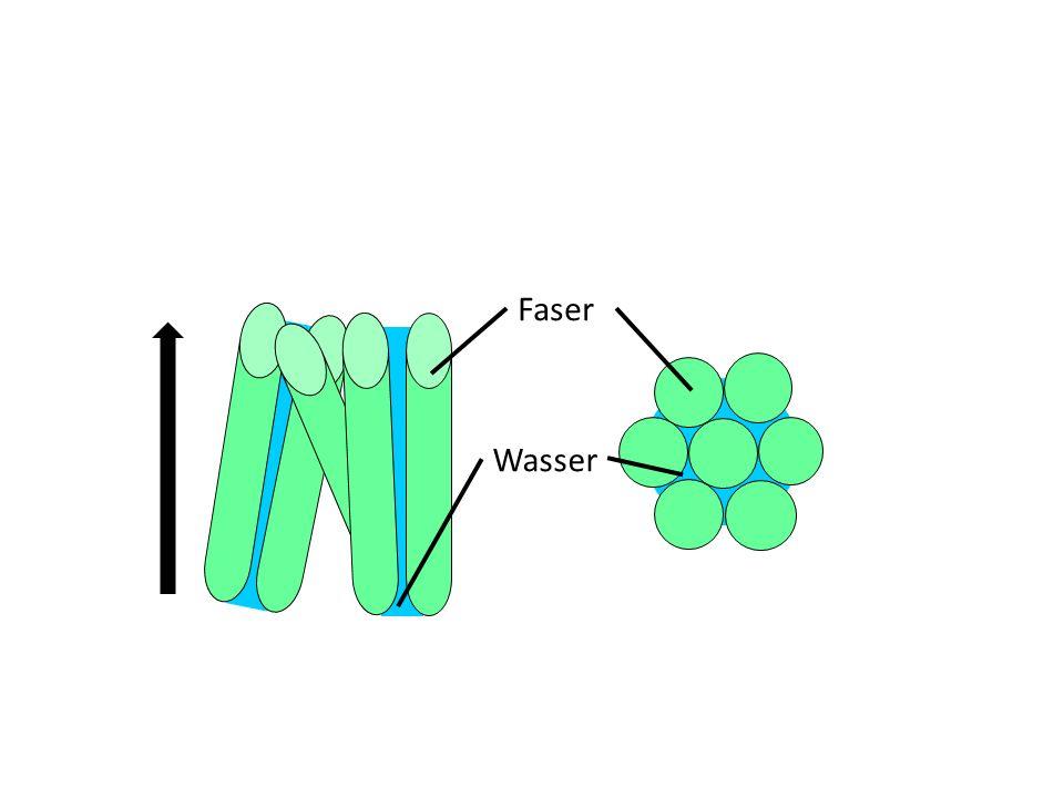 Faser Wasser