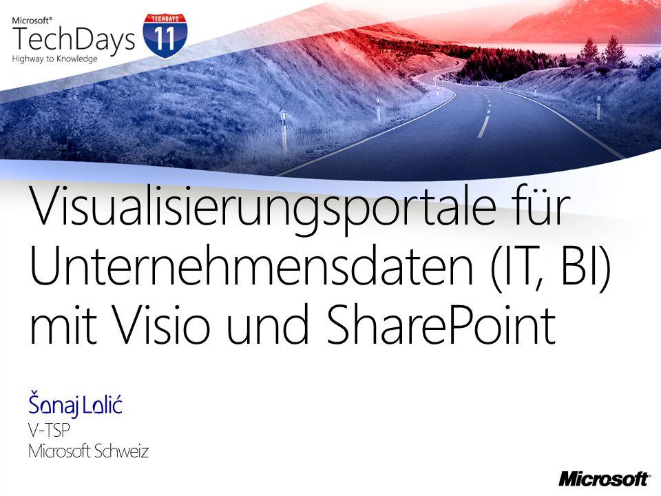 Visualisierungsportale für Unternehmensdaten (IT, BI) mit Visio und SharePoint