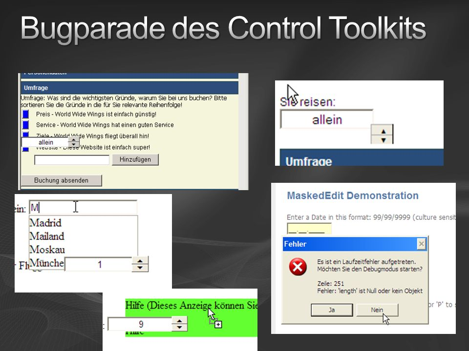 Bugparade des Control Toolkits