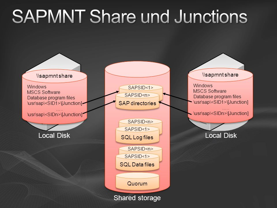 SAPMNT Share und Junctions