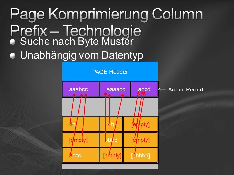 Page Komprimierung Column Prefix – Technologie
