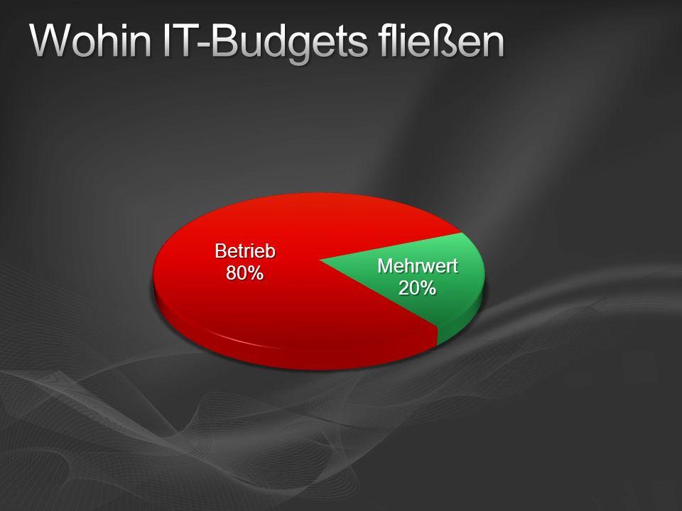 Wohin IT-Budgets fließen