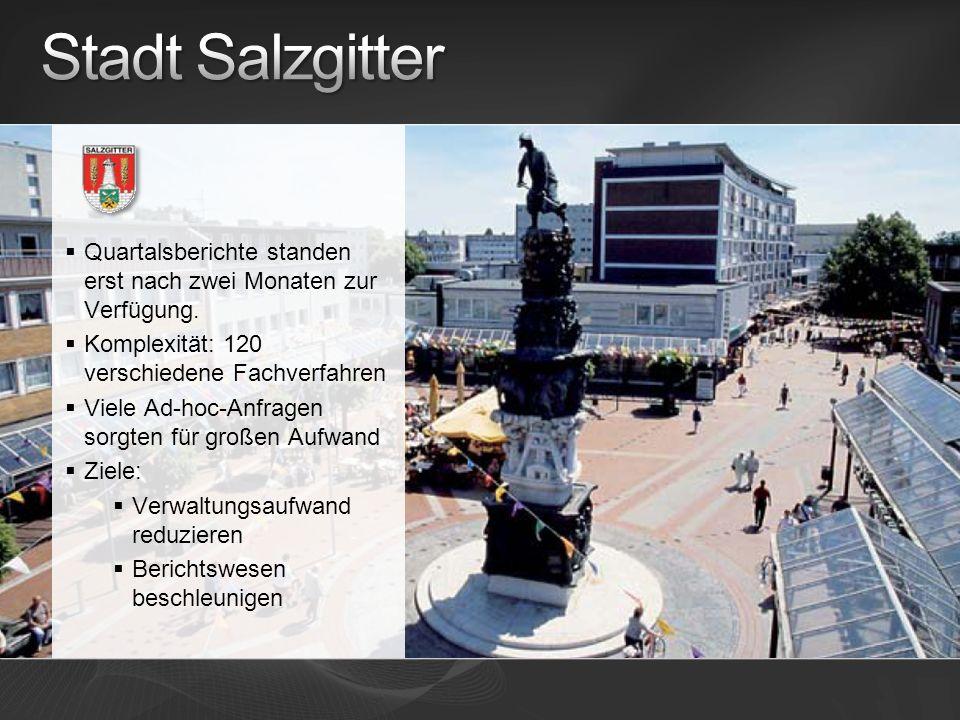 Stadt Salzgitter Quartalsberichte standen erst nach zwei Monaten zur Verfügung. Komplexität: 120 verschiedene Fachverfahren.