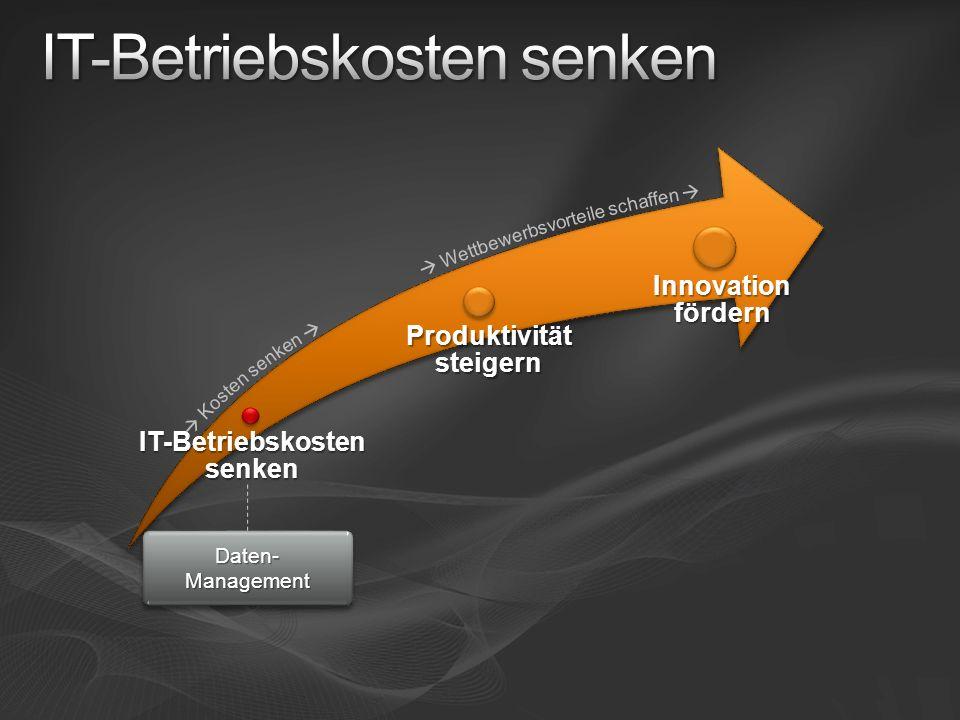 IT-Betriebskosten senken