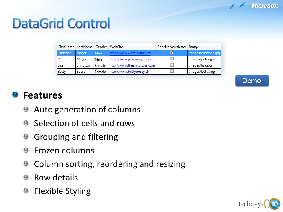 DataGrid Control Features Auto generation of columns