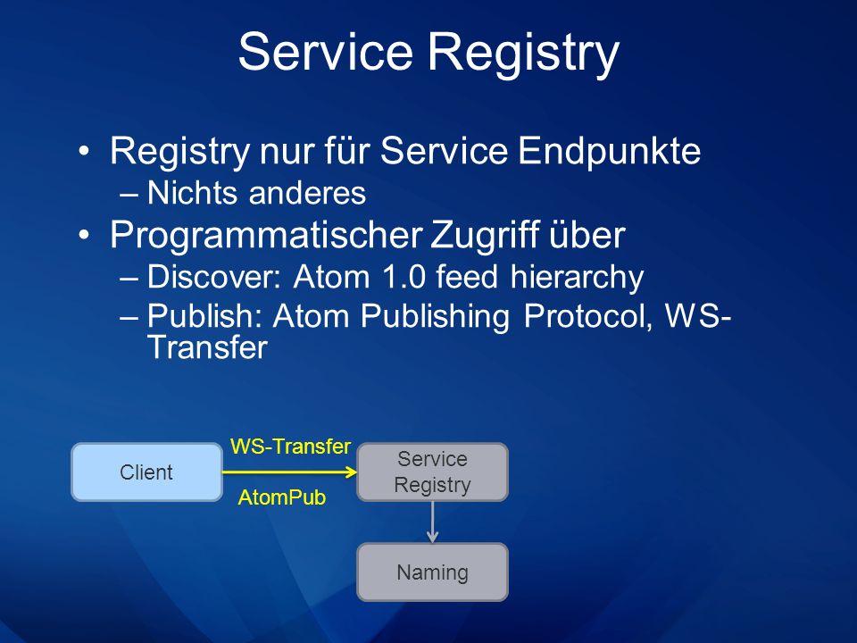 Service Registry Registry nur für Service Endpunkte