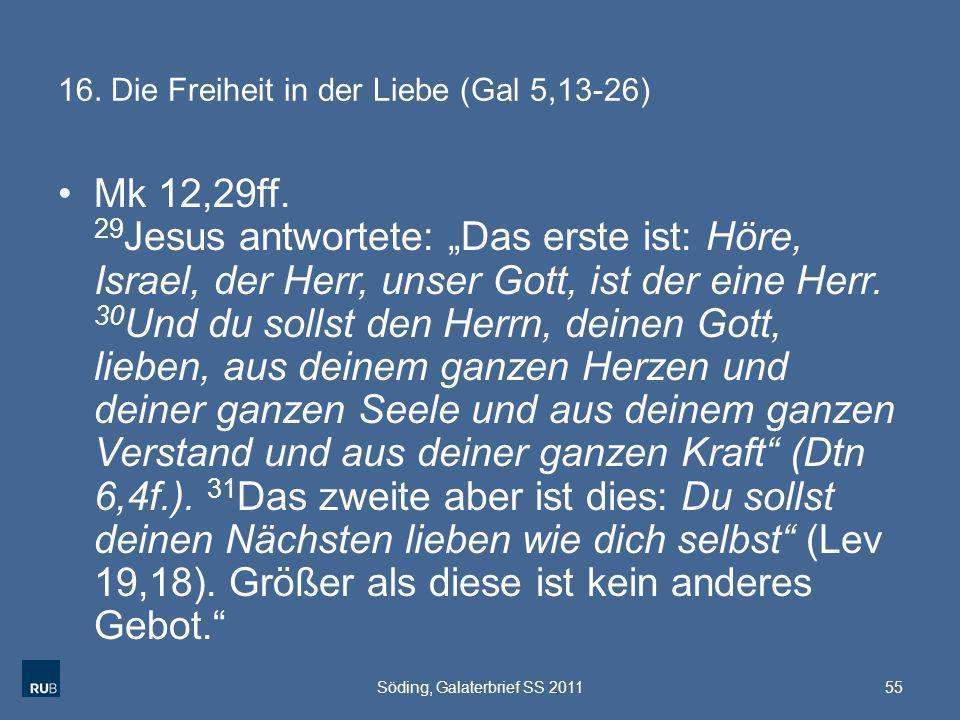 16. Die Freiheit in der Liebe (Gal 5,13-26)