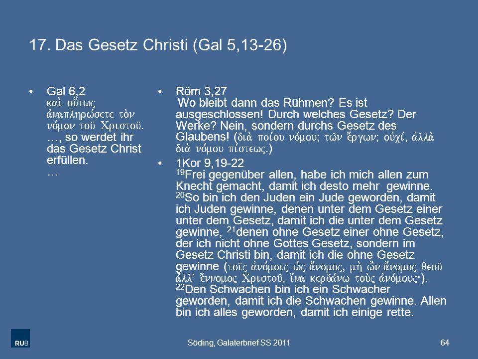 17. Das Gesetz Christi (Gal 5,13-26)