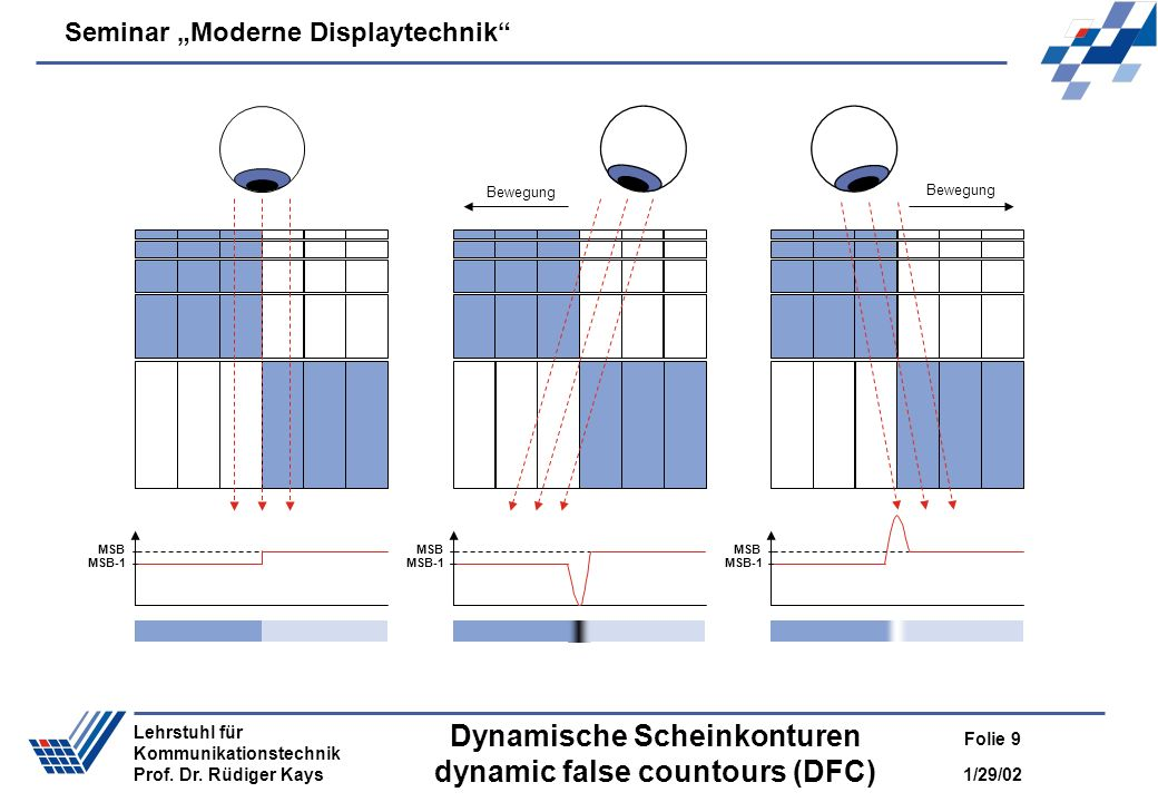 Dynamische Scheinkonturen dynamic false countours (DFC)