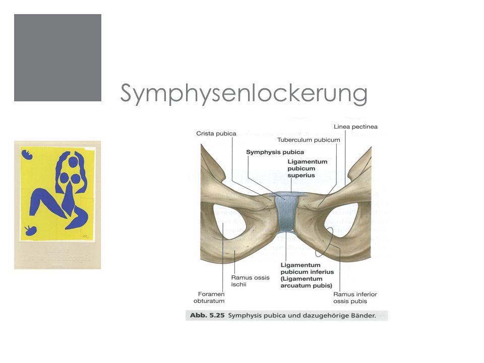 Symphysenlockerung Symphysenlockerung
