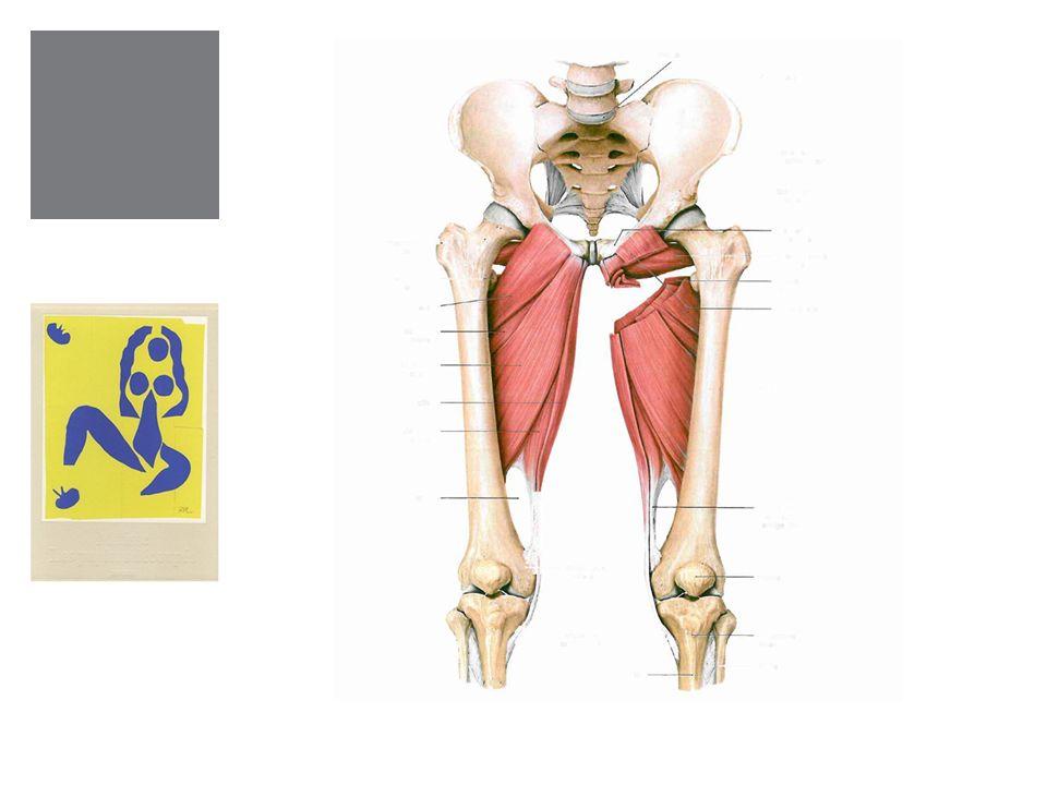 Häufig geschehen Interventionen wie Forceps oder Vacuum während einer PDA, die Anästhesie verhindert, dass die Frau einen Warnschmerz verspürt, wenn sie nicht richtig liegt.