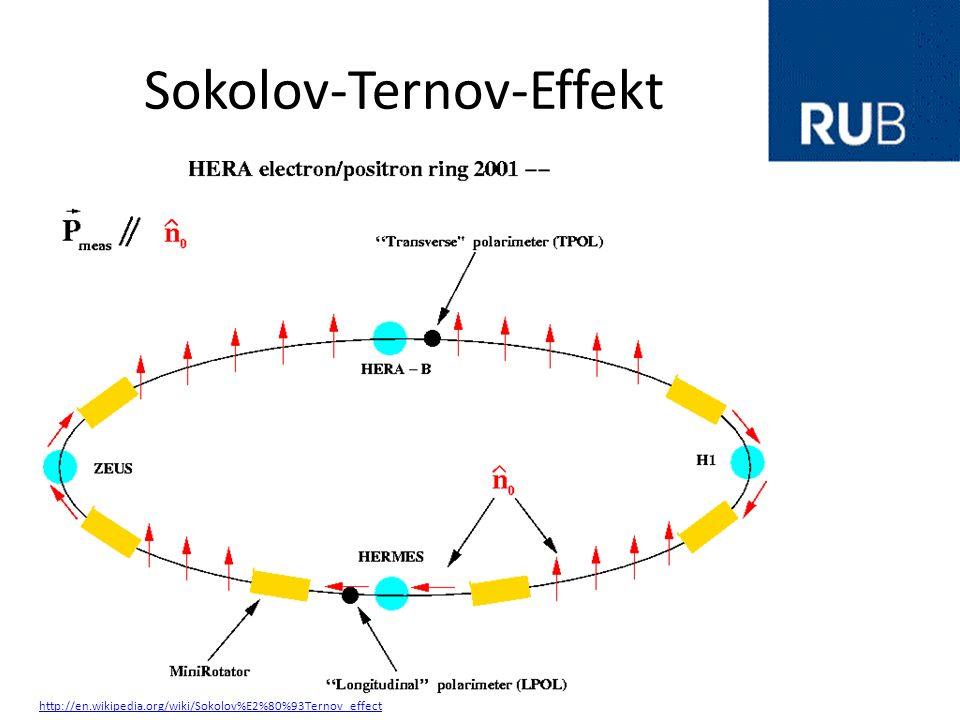 Sokolov-Ternov-Effekt