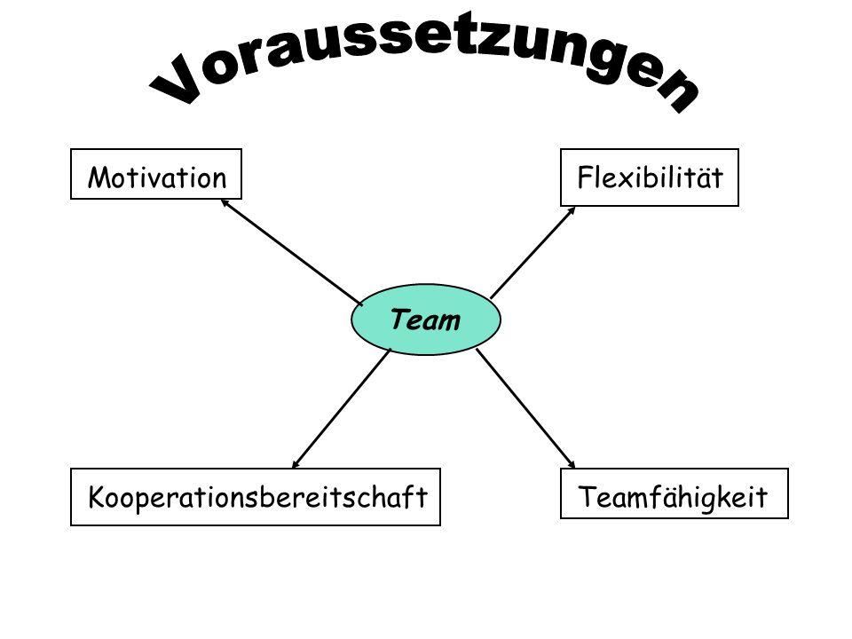 Voraussetzungen Motivation Kooperationsbereitschaft Teamfähigkeit