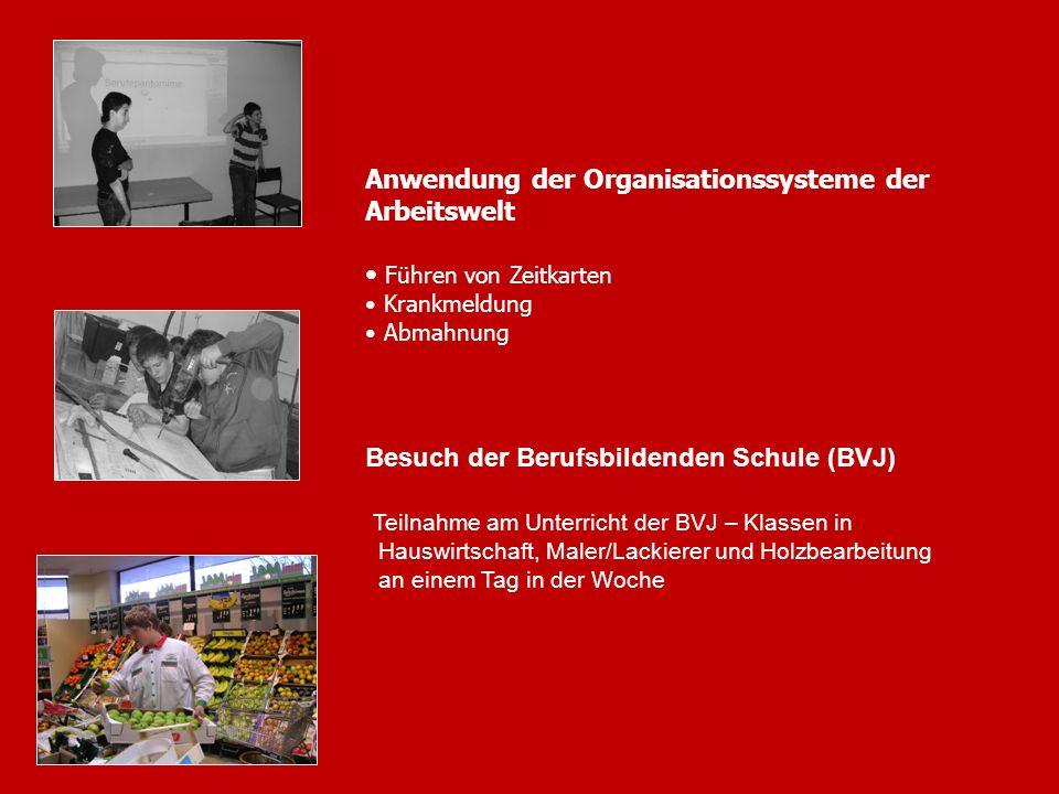 Anwendung der Organisationssysteme der Arbeitswelt