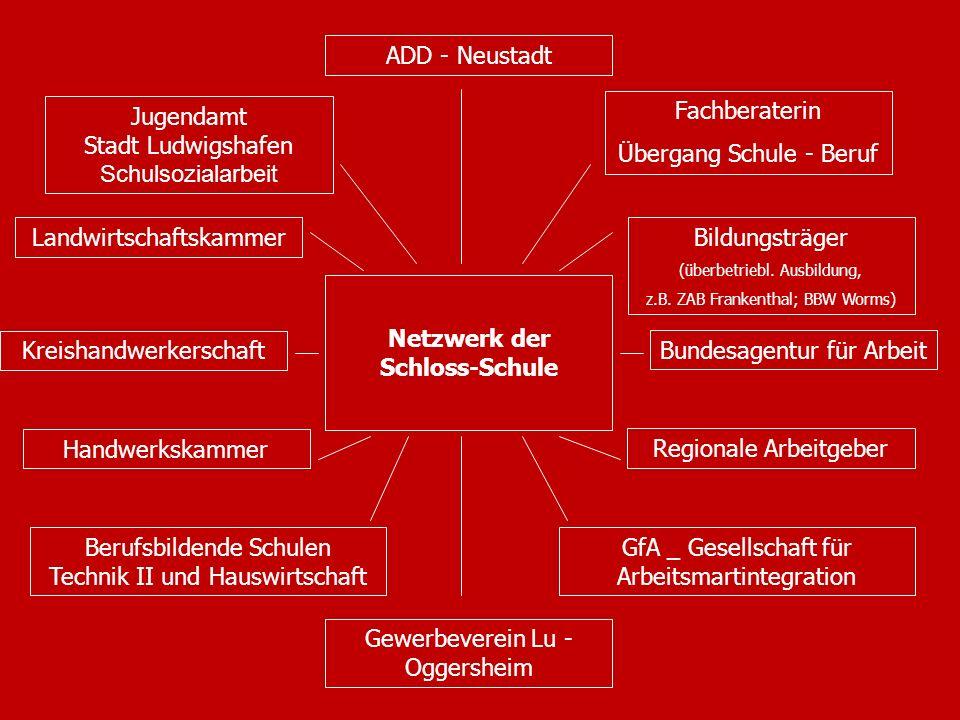 Netzwerk der Schloss-Schule