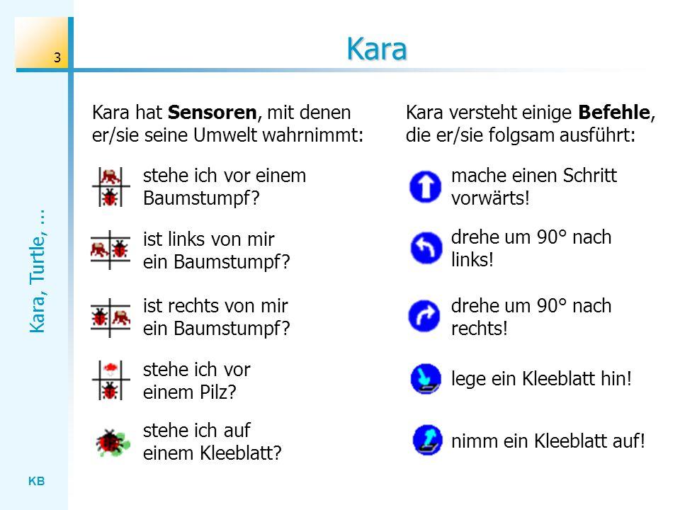 Kara Kara hat Sensoren, mit denen er/sie seine Umwelt wahrnimmt:
