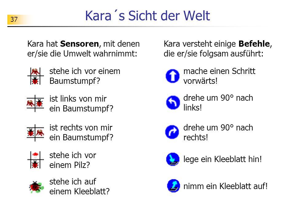 Kara´s Sicht der Welt Kara hat Sensoren, mit denen