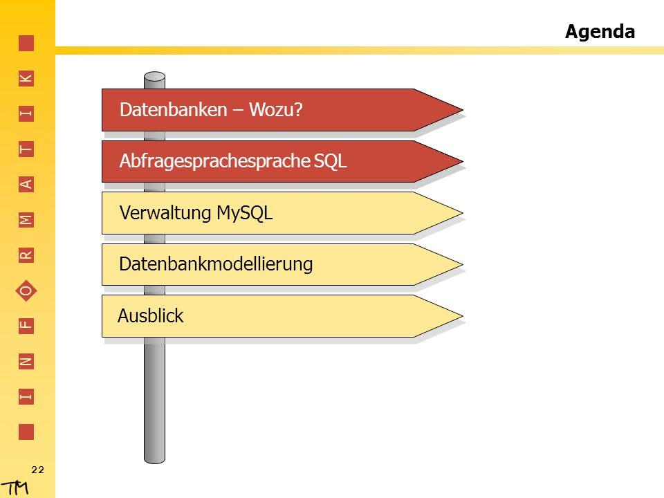 Agenda Datenbanken – Wozu Datenbanken – Wozu Abfragesprachesprache SQL. Abfragesprachesprache SQL.