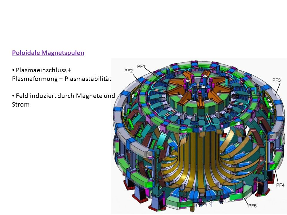 Poloidale Magnetspulen