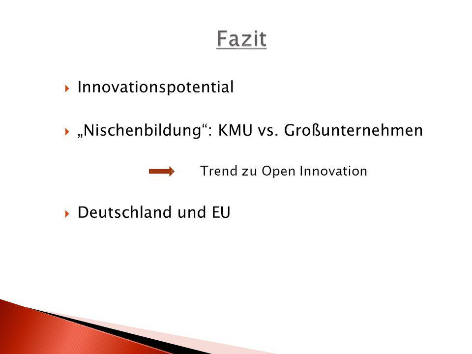 "Fazit Innovationspotential ""Nischenbildung : KMU vs. Großunternehmen"