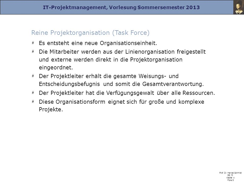Reine Projektorganisation (Task Force)