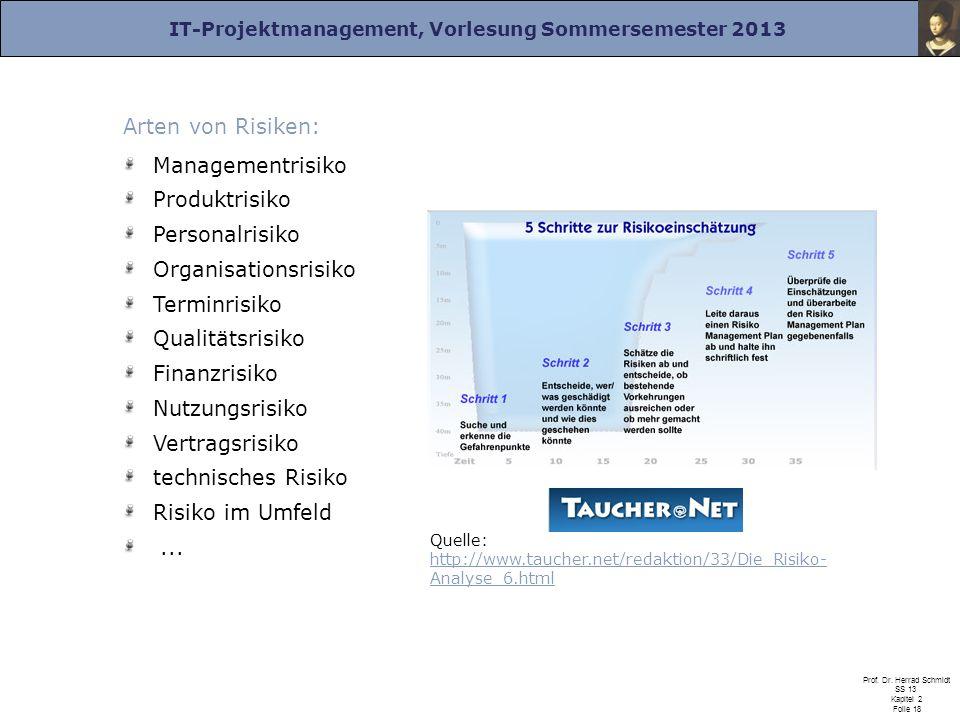 Arten von Risiken: Managementrisiko Produktrisiko Personalrisiko