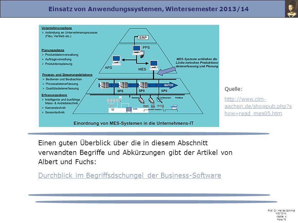 Durchblick im Begriffsdschungel der Business-Software