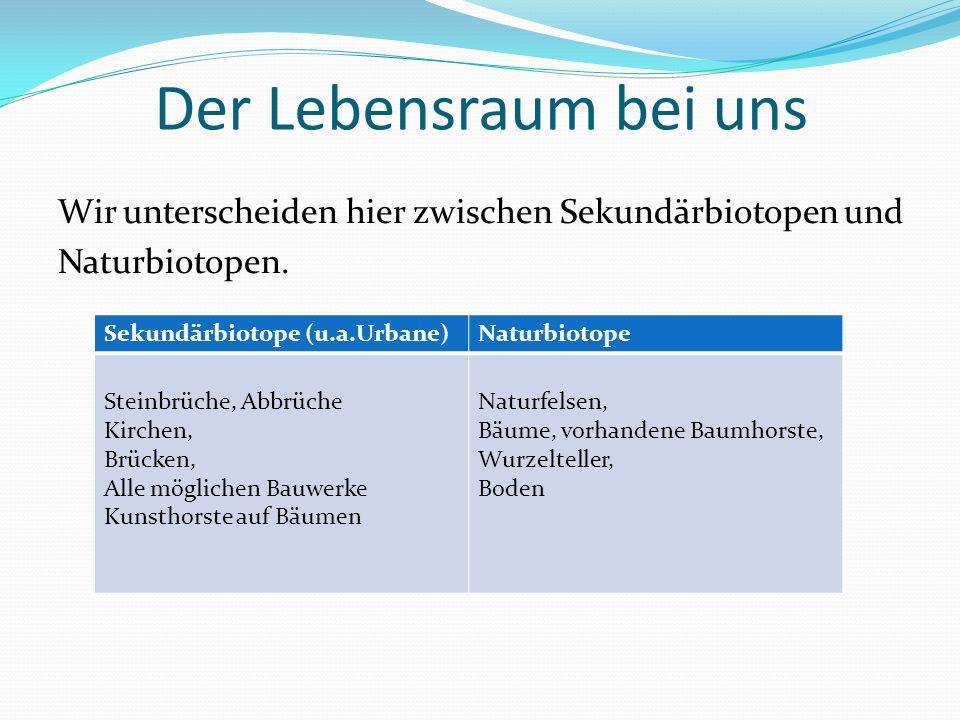 Der Lebensraum bei uns Wir unterscheiden hier zwischen Sekundärbiotopen und Naturbiotopen. Sekundärbiotope (u.a.Urbane)