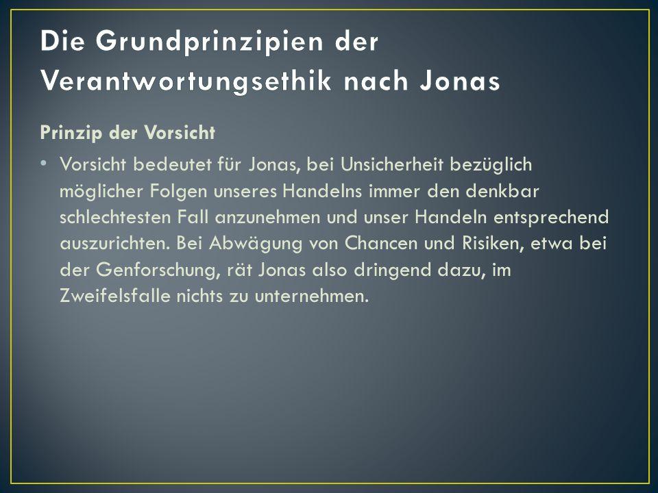 Die Grundprinzipien der Verantwortungsethik nach Jonas