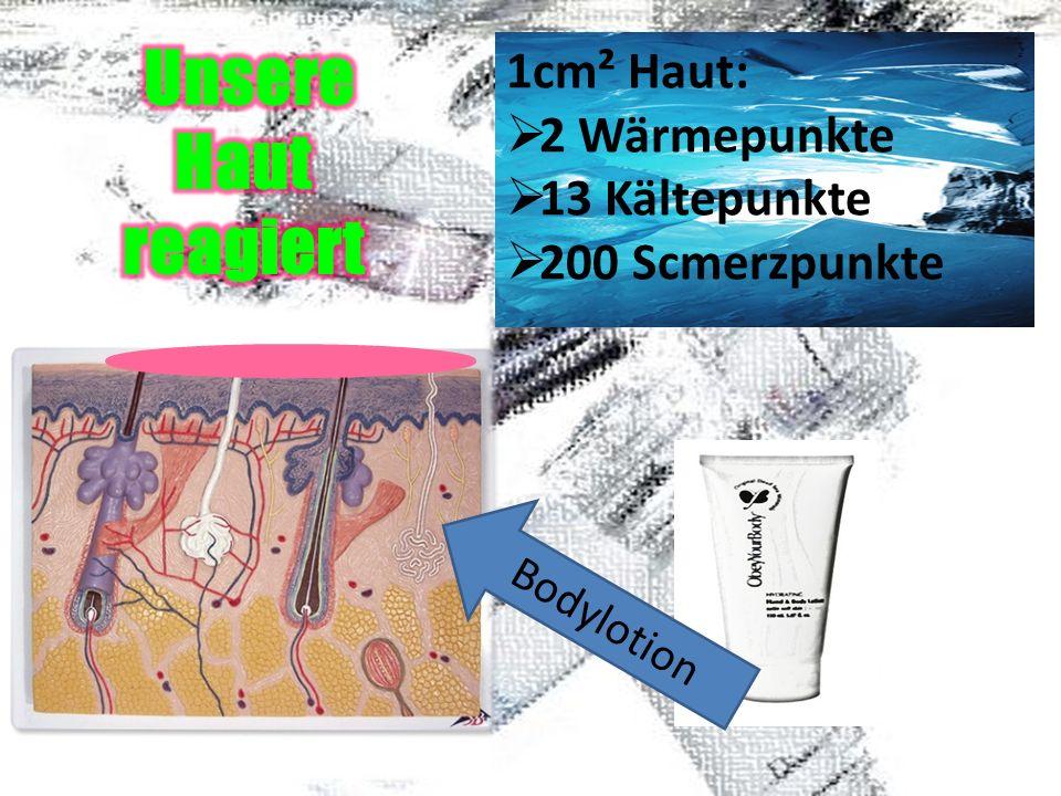 Unsere Haut reagiert 1cm² Haut: 2 Wärmepunkte 13 Kältepunkte