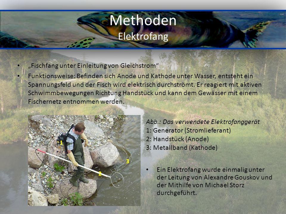 """Methoden Elektrofang """"Fischfang unter Einleitung von Gleichstrom"""