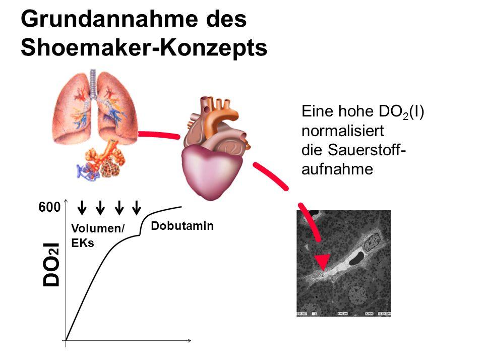 Grundannahme des Shoemaker-Konzepts DO2I Eine hohe DO2(I) normalisiert