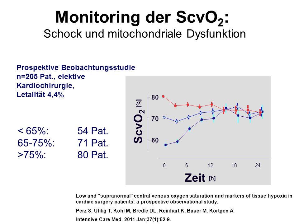 Schock und mitochondriale Dysfunktion