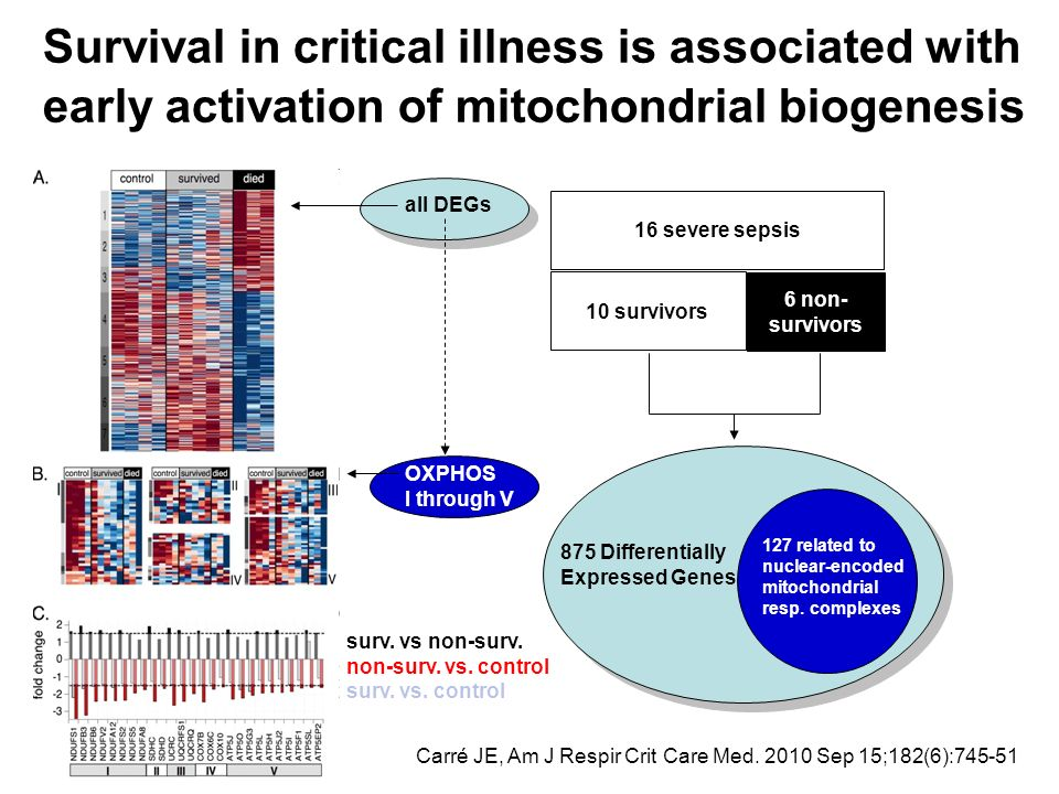 Survival in critical illness is associated with