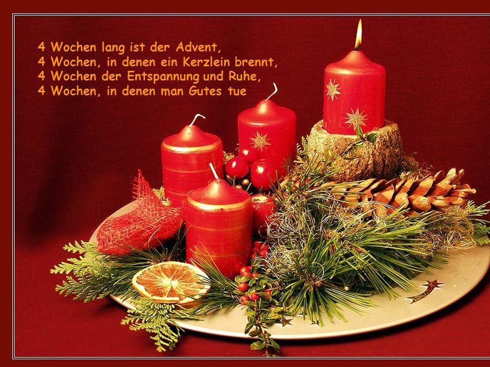 4 Wochen lang ist der Advent, 4 Wochen, in denen ein Kerzlein brennt, 4 Wochen der Entspannung und Ruhe, 4 Wochen, in denen man Gutes tue