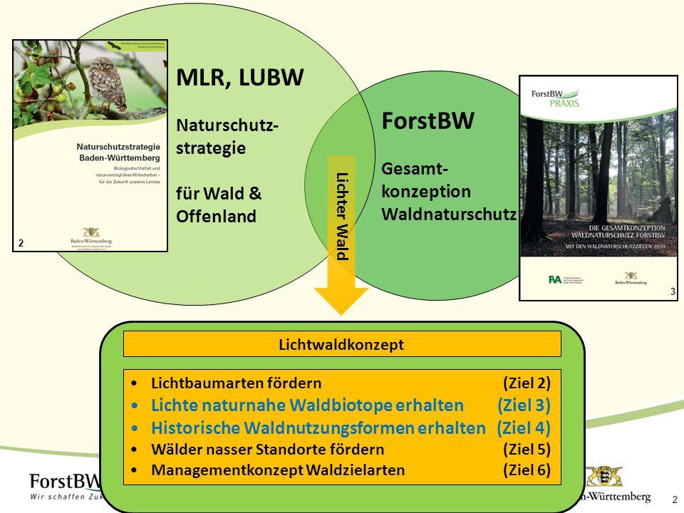 MLR, LUBW ForstBW Naturschutz-strategie für Wald & Offenland