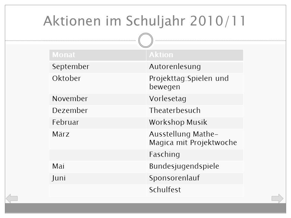 Aktionen im Schuljahr 2010/11