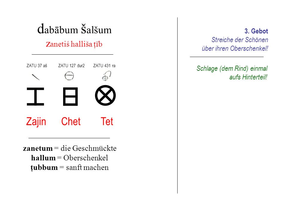 zanetum = die Geschmückte