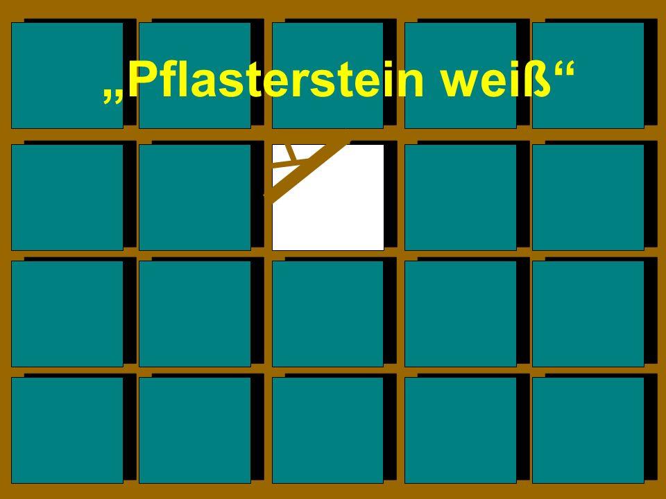 """""""Pflasterstein weiß"""