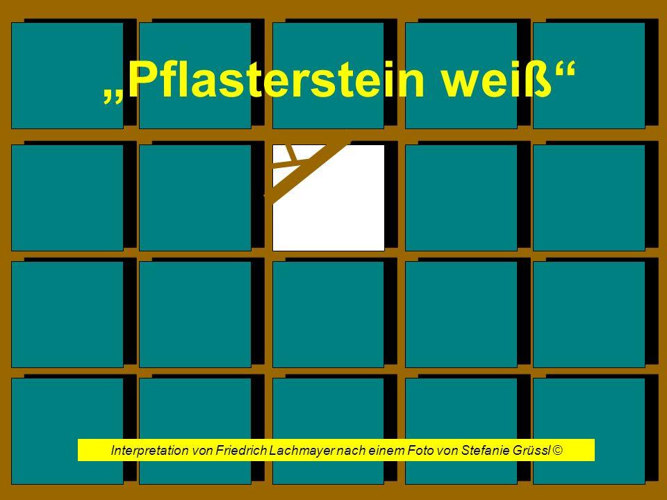 """""""Pflasterstein weiß Interpretation von Friedrich Lachmayer nach einem Foto von Stefanie Grüssl ©"""