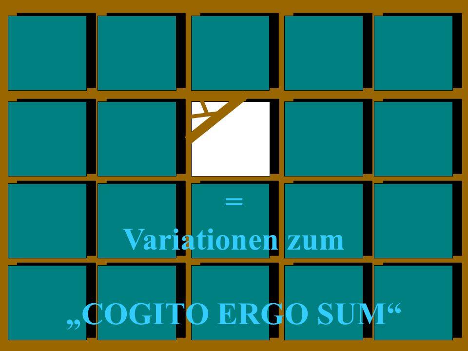 """= Variationen zum """"COGITO ERGO SUM"""