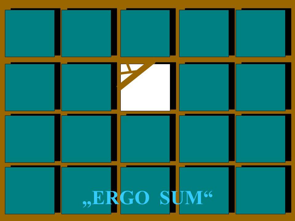 """""""ERGO SUM"""
