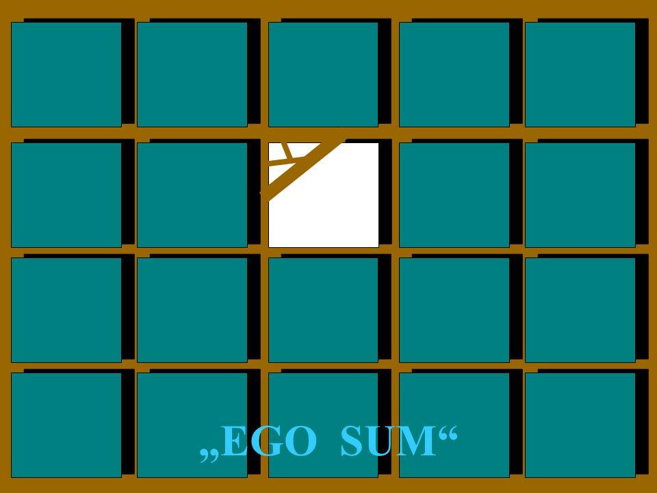 """""""EGO SUM"""