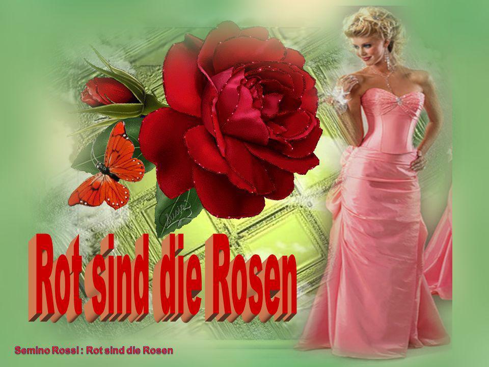 Rot sind die Rosen Semino Rossi : Rot sind die Rosen