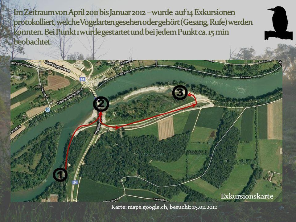 Im Zeitraum von April 2011 bis Januar 2012 – wurde auf 14 Exkursionen protokolliert, welche Vogelarten gesehen oder gehört (Gesang, Rufe) werden konnten. Bei Punkt 1 wurde gestartet und bei jedem Punkt ca. 15 min beobachtet.