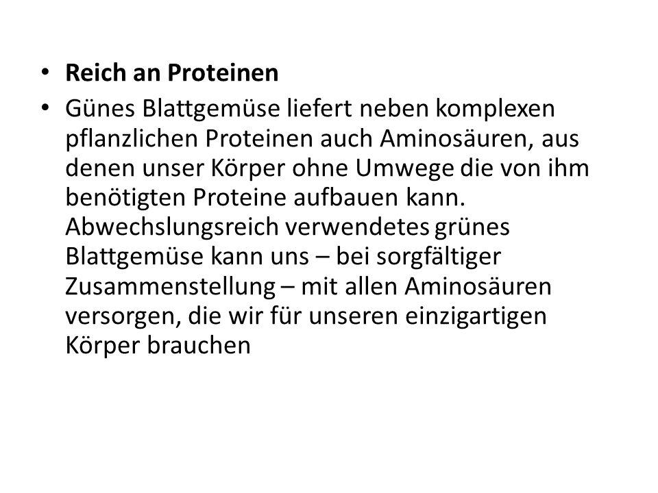 Reich an Proteinen