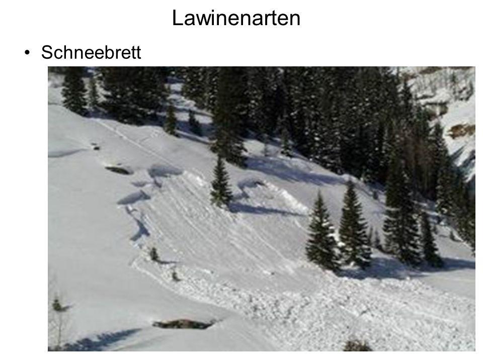 Lawinenarten Schneebrett